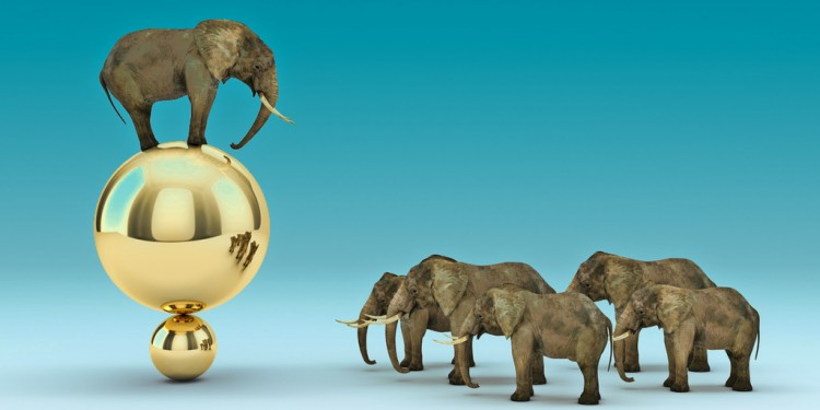Elephant-sur-balle-meilleur-robo-advisor